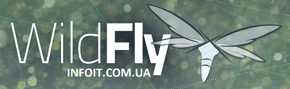 Как установить WildFly на Ubuntu 20.04 | 18.04