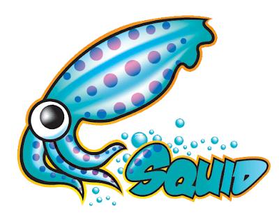 Как установить прокси-сервер Squid на CentOS 8